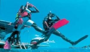 Nardymo iš laivo nardymo kursai (Boat diver)