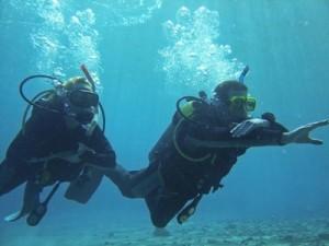 Povandeninės navigacijos nardymo kursai (Underwater navigator)
